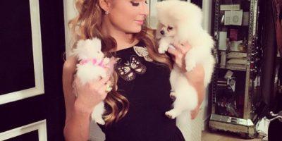 FOTOS: Paris Hilton lleva a sus costosos perros a premiación canina