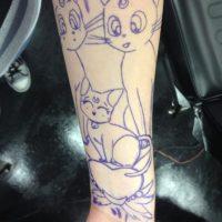 Erika comenzó con Artemis, Diana y Luna, los gatos de la serie. Foto:WasHuZ/Imgur
