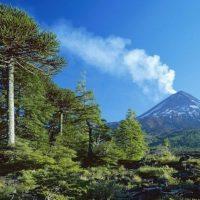 Su última gran erupción fue en 1994, aunque tuvo actividad sísmica en 2008 y posterior al terremoto de 2010. Foto:instagram.com/travelballoons