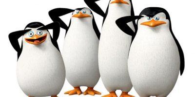 Fotos. Unos pingüinos muy alocados y divertidos se apoderan de la pantalla