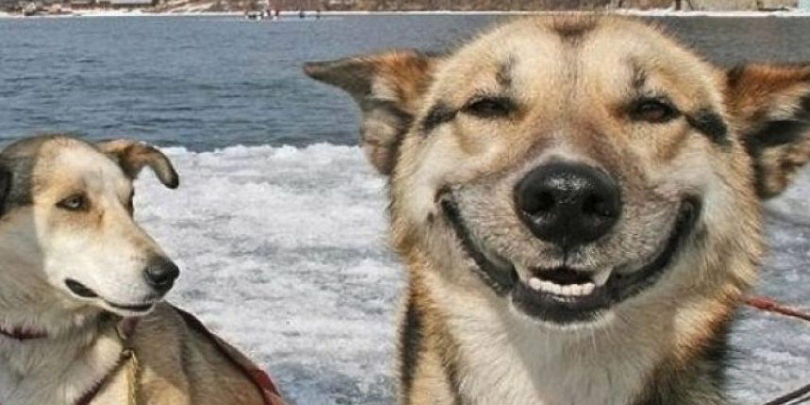 ¡Simplemente, feliz! Foto:Hudo
