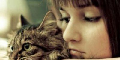 8. Se sientan en el sillón a ver telenovelas o películas con sus gatos. Foto:Tumblr.com/Tagged-solteros