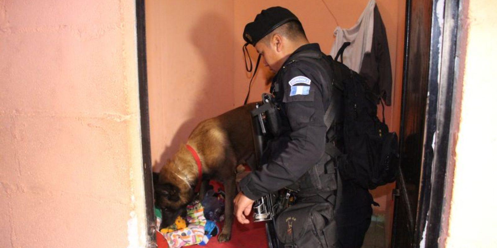 Hubo inspección en busca de drogas. Foto:PNC