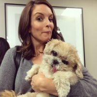 Tina Fey Foto:Instagram @marniethedog