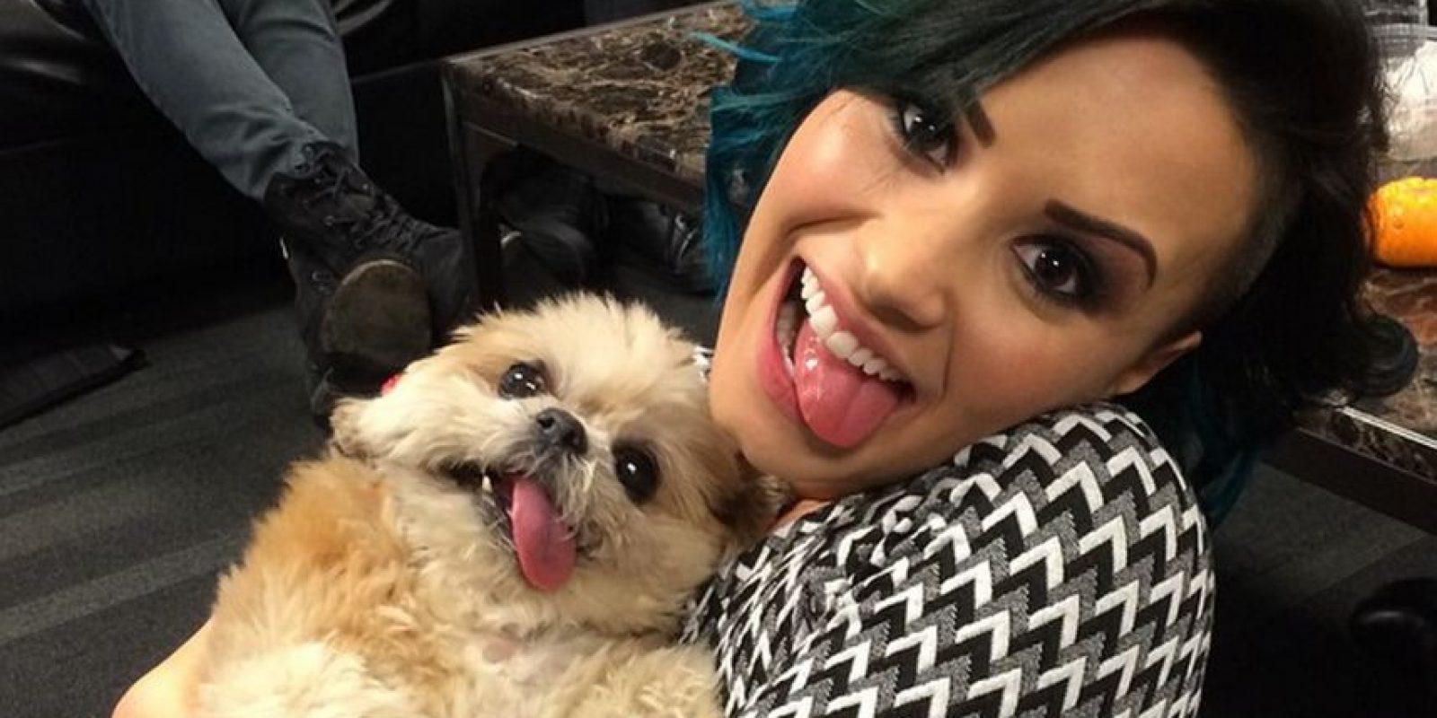 Demi Lovato Foto:Instagram @marniethedog