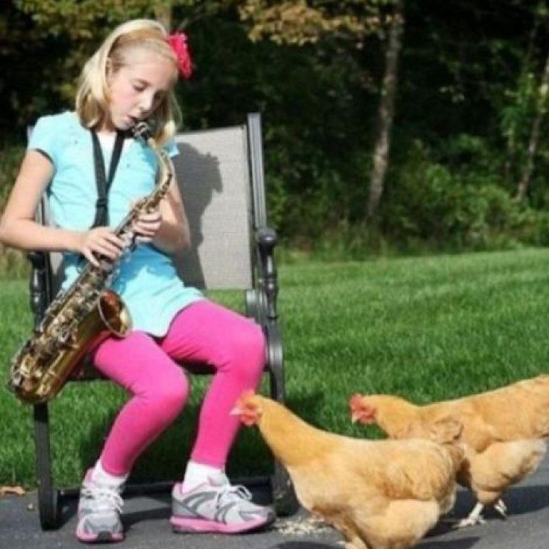 ¿Su melodía le gustará a las gallians? Foto:Funy Pics