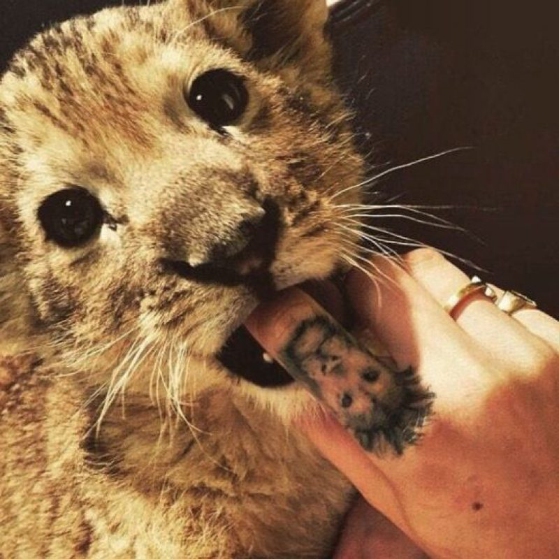 Cara se tatuó a un león en su dedo índice debido a su signo astrológico Foto:Instagram/Cara Delevingne