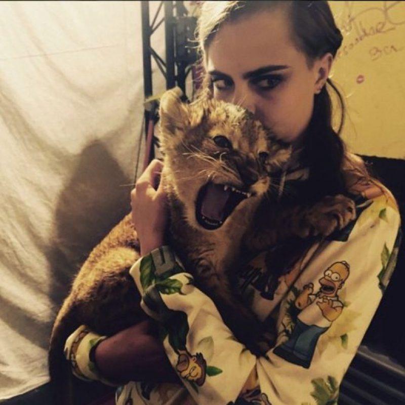 La modelo tuvo la oportunidad de convivir con este cachorro de león durante su sesión fotográfica. Foto:Instagram/Cara Delevingne