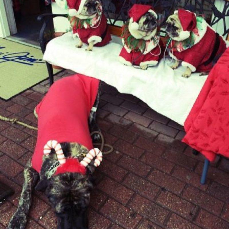 Celebró su Navidad. Foto:Instagram