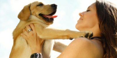 Estudio: Personas obsesionadas con sus mascotas podrían ser neuróticos y ansiosos