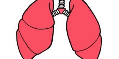 No existe evidencia de que fumar cigarrillos bajos en alquitrán disminuya el riesgo. Foto:Tumblr.com/tagged-pulmón