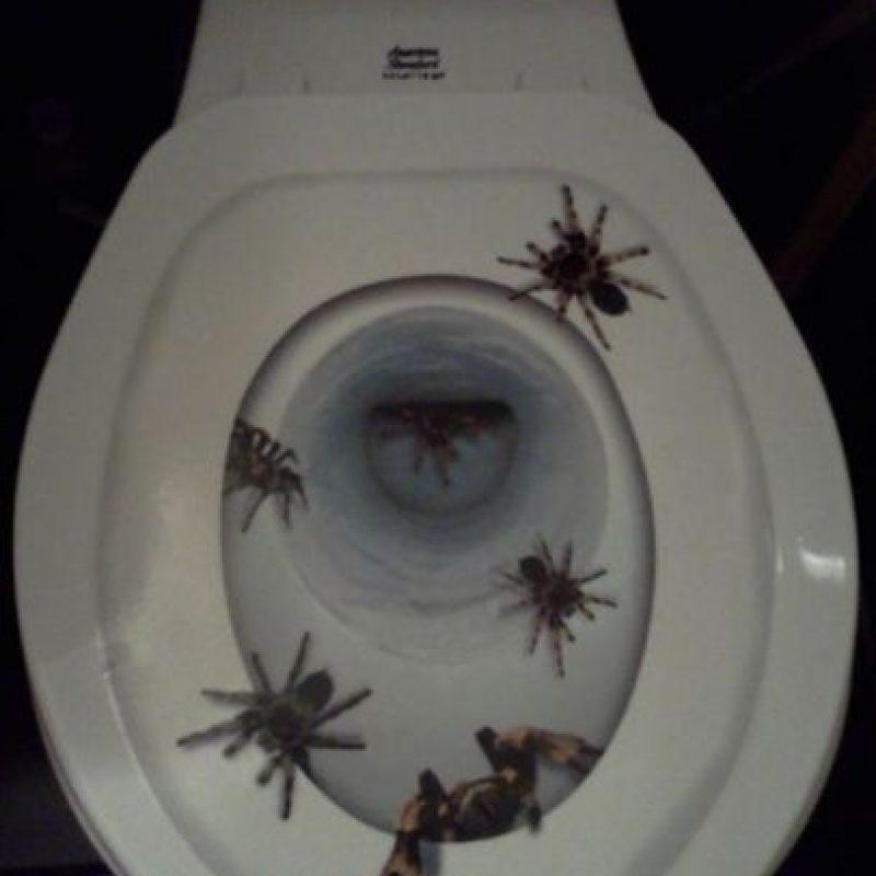 En su taza del baño. Foto:Imgur