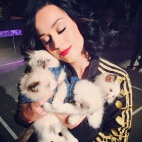 Foto: Instagram: @katyperry