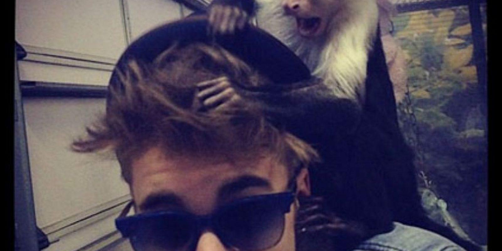 Abandonaste a tu mono. Foto:Instagram