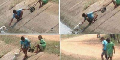 Dos jóvenes rescataron un perrito. Foto:Imgur