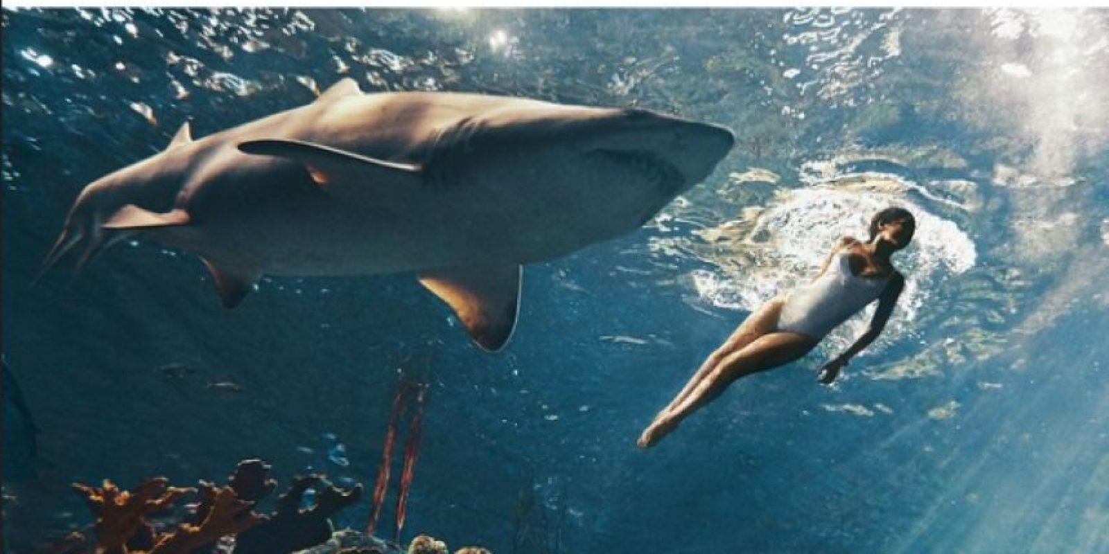 Rihanna nadó con un tiburón. Foto:Instagram/badgalriri