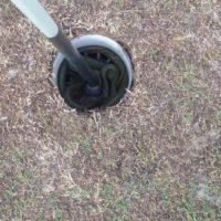 Serpientes en campos de golf. Foto:Imgur