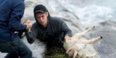 Dos noruegos salvan una cabra. Foto:Facebook