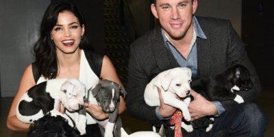 Es amoroso con sus perros. Foto:Facebook/Channing Tatum