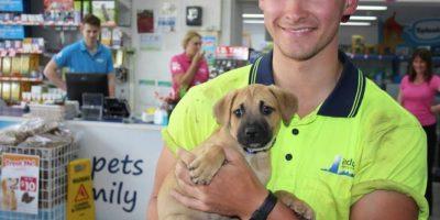 Ben es un australiano que adoptó a este perrito, Rafa. Foto:Pet´s Haven Animal Shelter