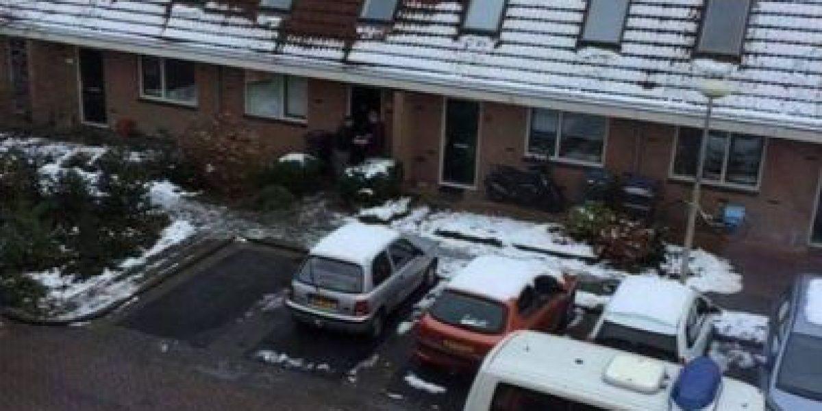 Inusual derretimiento de nieve delata a cultivadores de marihuana