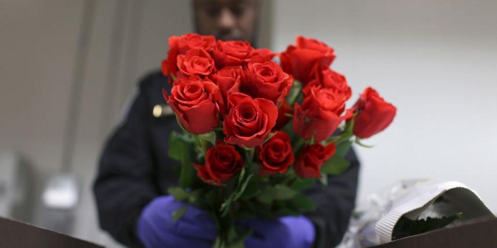 Policías inspeccionan flores en Miami Foto:Getty Images