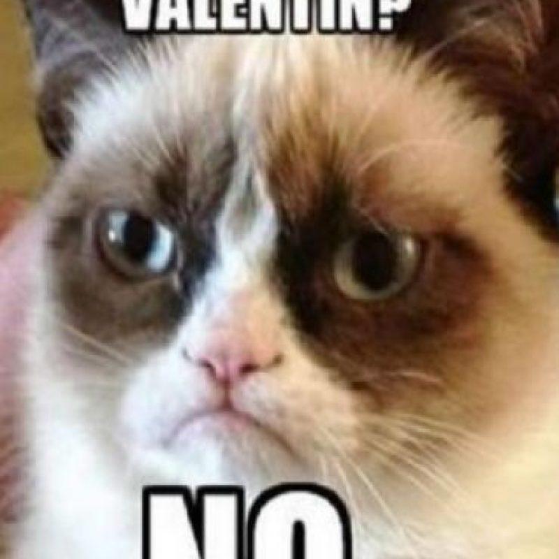 """Mientras tanto, el 13% de las mujeres dicen que celebran sólo """"porque todo el mundo lo hace."""" Foto:Tumblr.com/tagged-amor-san-valentin"""