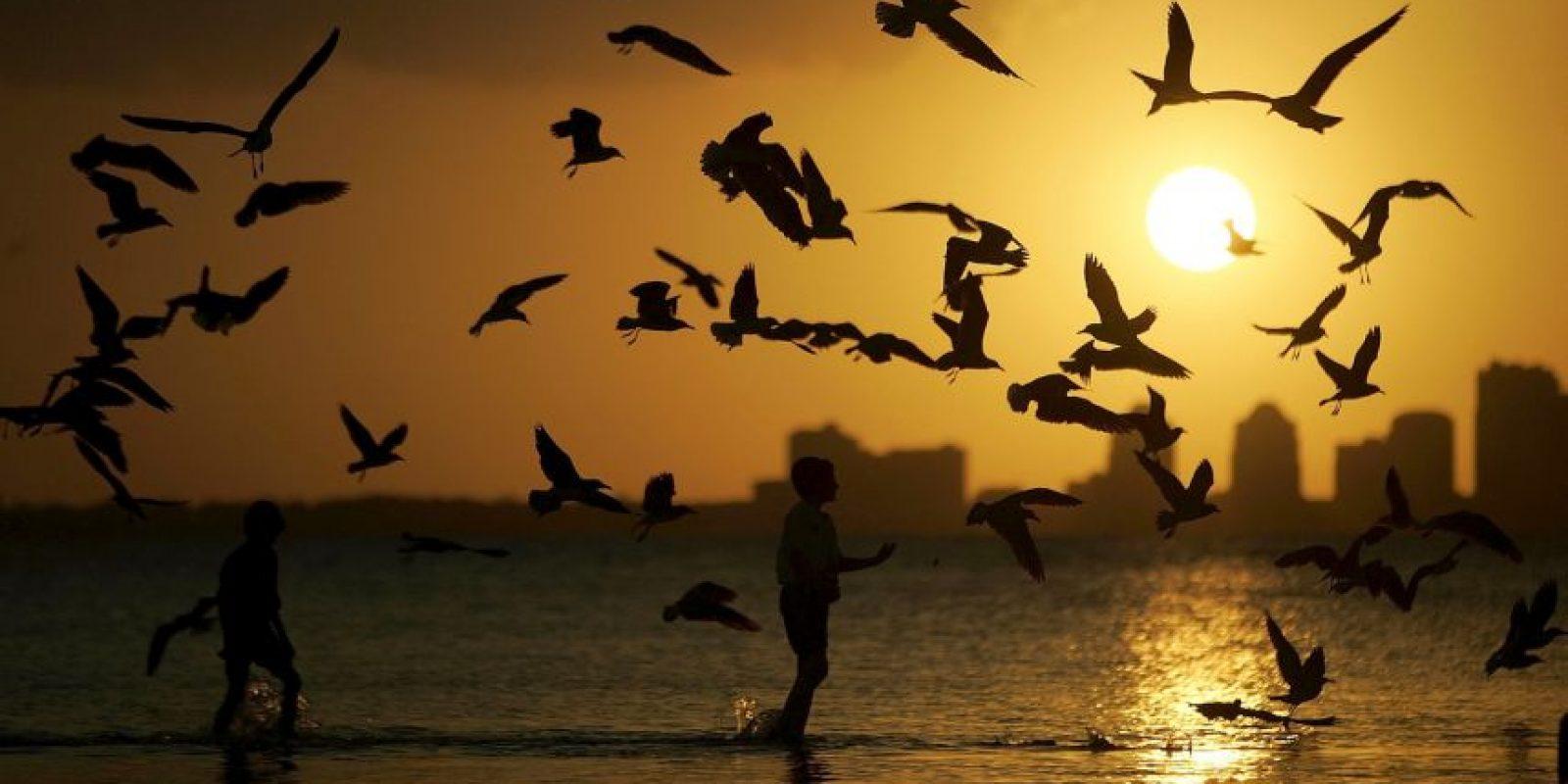 5. Miami en Estados Unidos Foto:Getty Images