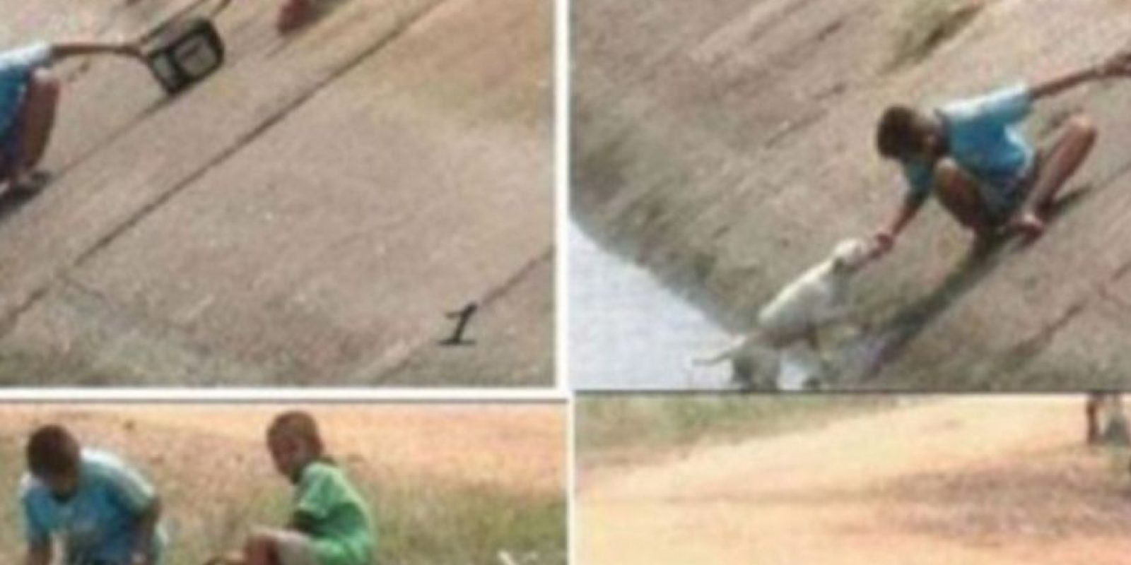 Estos niños rescatan a un perrito. Foto:Tumblr