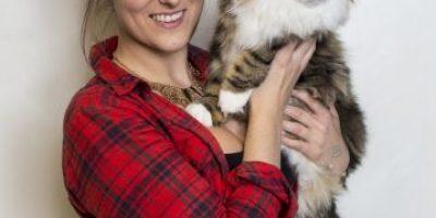 Feliz Día del Gato: Mitos y verdades de los mininos