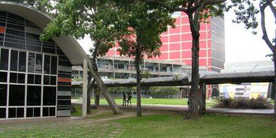 Estos nuevos hallazgos, junto con la evidencia de estudios anteriores, refuerzan la importancia de los espacios verdes para proveernos de pueblos y ciudades más saludables. Foto:Wikimedia