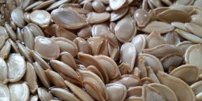 Comer semillas de calabaza mejora el estado de ánimo de forma más efectiva que cualquier otro alimento, según informes del estudio. Foto:Pixabay