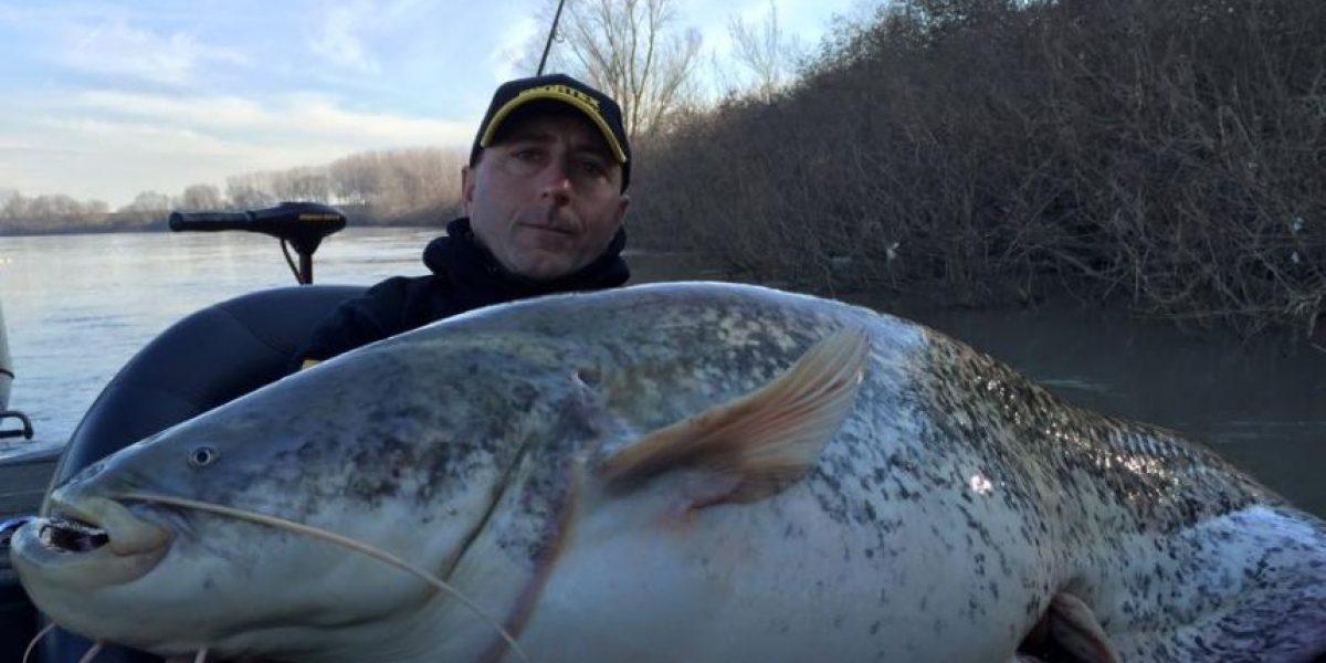 FOTOS: Capturan a enorme pez de 127 kilos solo con una caña de pescar