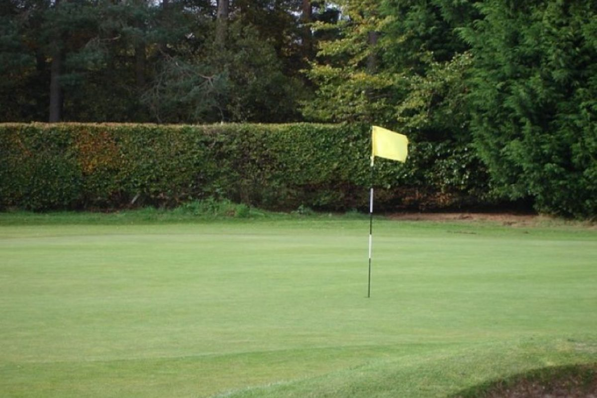5. Jugando golf Foto:Pixabay