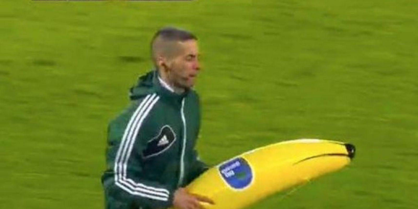 Un plátano gigante cayó al césped Foto:Twitter