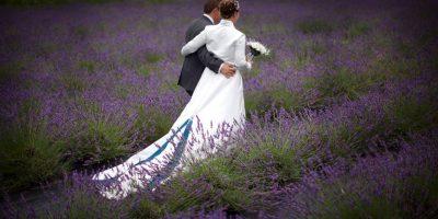 Estudio: Parejas que esperan para tener relaciones sexuales tienen matrimonios más felices