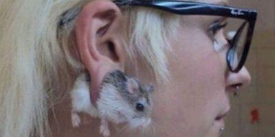 ¿Qué culpa tiene el pequeño roedor? Foto:Tumblr.com/tagged-adolescente-wtf