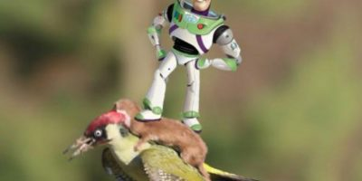 Buzz Lightyear Foto:Twitter
