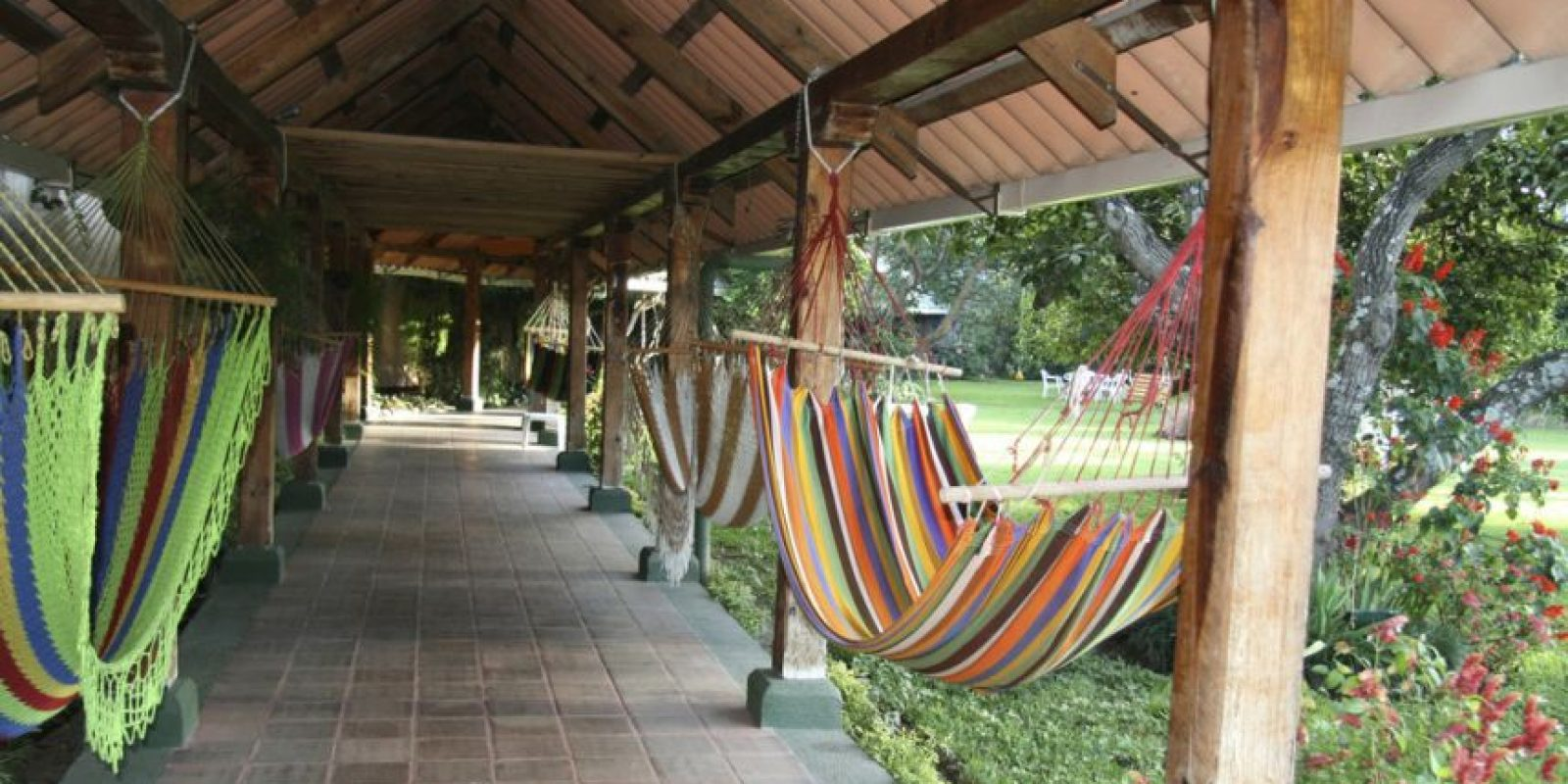 O donde puedas tomar una siesta. Foto:http://www.buzzfeed.com