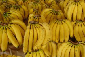 Este signo debe tener mucha motivación para controlar sus malos hábitos alimenticios. Foto:Wikimedia