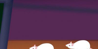 Porque los dos personajes son simples ratas de laboratorio modificadas genéticamente. Foto:Animation Domination High Def