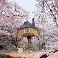 Casa del árbol del arquitecto Terunobu Fujimori combina minimalismo y la fantasía. Mientras que el interior es sencillo y moderno, el exterior parece una página de un cuento de hadas. Foto:architecturendesign.net