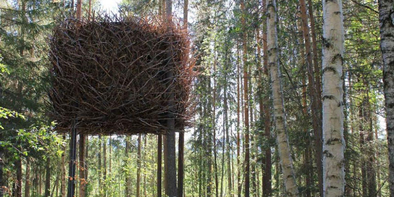 Esta casa del árbol, por los creadores del Hotel Árbol, podría confundir a las aves aún más. Aunque parece un nido gigante desde el exterior, la casa dispone de una sala moderna construida en el interior. Foto:architecturendesign.net