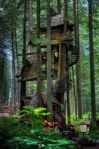 ¿Por qué tener una casa en el árbol de un solo piso, si usted puede tener tres? Esta se dice que es la casa del árbol más alta en Canadá. Lo puedes encontrar en algún lugar cerca de Revelstoke. Foto:architecturendesign.net