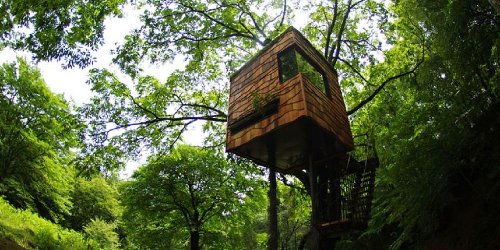 """Diseñado por Takashi Kobayashi, The Tree House busca a """"romper el sentimiento de separación que existe entre los seres humanos y la naturaleza."""" Foto:architecturendesign.net"""