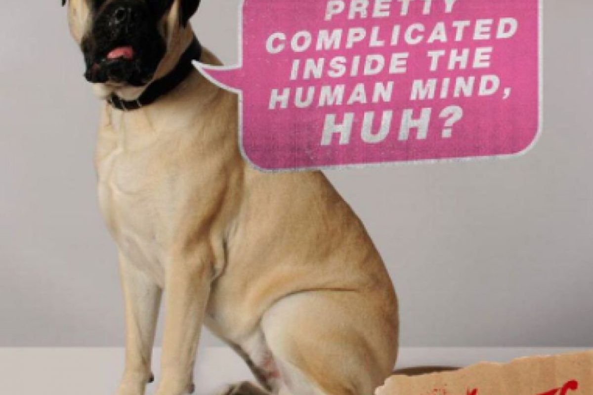 Por otra parte, el perro intenta detenerlo. Foto:Vía Twitter @TheVoicesMovie