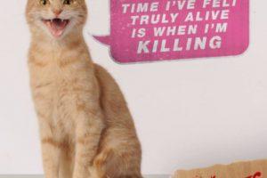 Durante el rodaje, el gato fue el más huraño. Foto:Vía Twitter @TheVoicesMovie