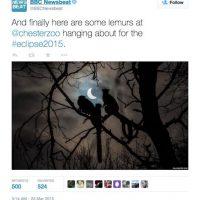 Esta fot, publicada por la BBC, captó en el momento justo a unos lemures casi al final del eclipse. Foto:Twitter @BBCNewsbeat