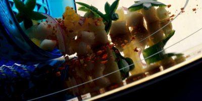 Restaurante mexicano Chef Ricardo Zurita Foto:Cortesía Restaurante Azul y Oro