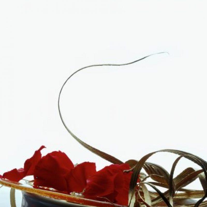 Crema de mamey estofada a la hoja de oro con jalea de pétalos de clavel Foto:Cortesía: Restaurante Dulce Patria